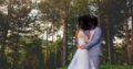 Pronovias super fint brudekjole.